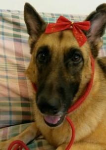 Zoe with ribbon around her head